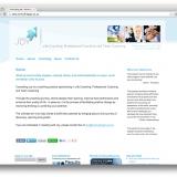 website-consulting-joy-01