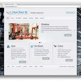 website-swan-steel-sa-01
